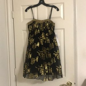Black and gold cocktail dress